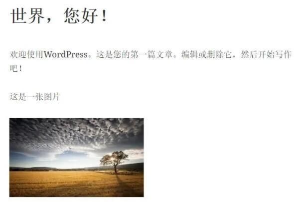 Wordpress登录后查看效果